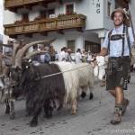Oetztaler_Trachtenfest-2230