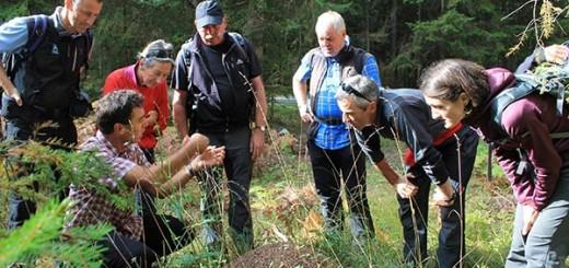 Fortbildung für die Naturpark-Führer. Foto: NP Ötztal / Patrizia Plattner