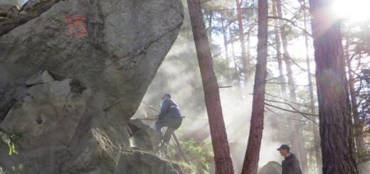 Steinschlagsicherung bei Haiming. Foto: Land Tirol