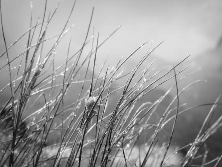 Windachtal-Soelden-8858